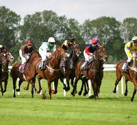 saturday horse racing tips 17/05